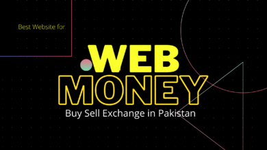 Buy Webmoney Dollars in Pakistan