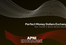 Cashout Perfect Money Dollars in Pakistan 2021