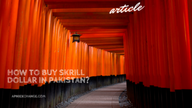 How to Buy Skrill Dollar in Pakistan?