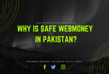 Why is safe WebMoney in Pakistan?