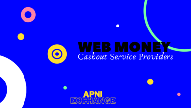 The Best Way To Cashout Webmoney Dollars in Pakistan